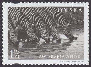 Zwierzęta Afryki - 4272