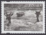 Zwierzęta Afryki - 4273
