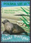 Ssaki Bałtyku - 4286