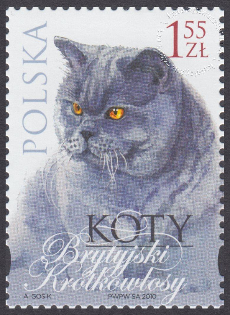Koty znaczek nr 4317