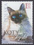 Koty - 4318