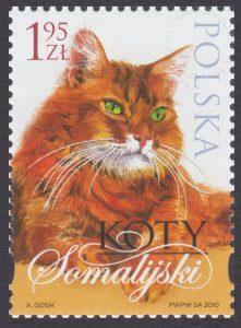 Koty - 4319