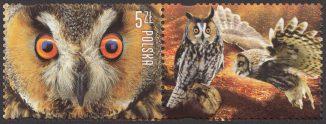 Polskie ptaki - 4815
