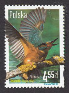 Polskie ptaki - znaczek nr 4453