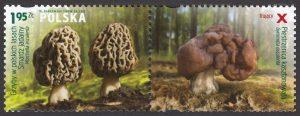 Grzyby w polskich lasach - znaczek nr 4430