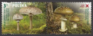 Grzyby w polskich lasach - znaczek nr 4431