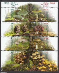 Grzyby w polskich lasach - ark. 4429-4432