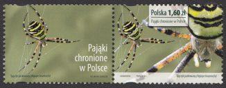 Pająki chronione w Polsce - znaczek nr 4504