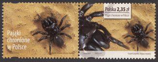Pająki chronione w Polsce - znaczek nr 4505