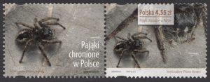 Pająki chronione w Polsce - znaczek nr 4507