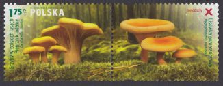 Grzyby w polskich lasach - znaczek nr 4545