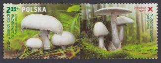 Grzyby w polskich lasach - znaczek nr 4546