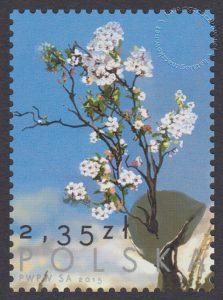70 rocznica zakończenie II wojny światowej - znaczek nr 4613