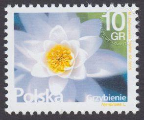 Kwiaty i owoce - znaczek nr 4638