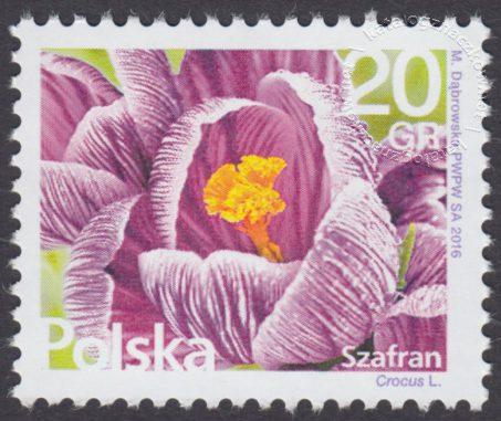 Kwiaty i owoce - znaczek nr 4697