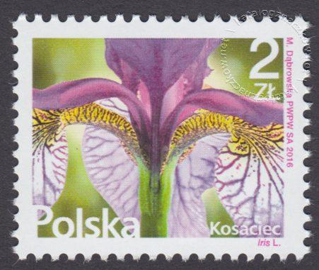 Kwiaty i owoce - znaczek nr 4706