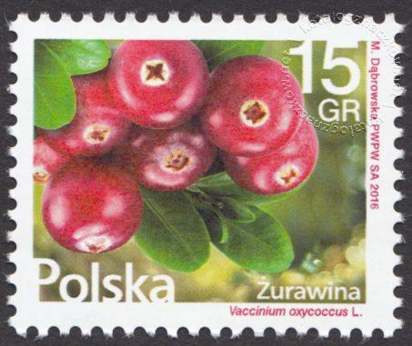 Kwiaty i owoce - znaczek nr 4721
