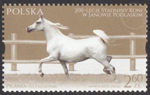 200-lecie Stadniny Koni w Janowie Podlaskim - 4768