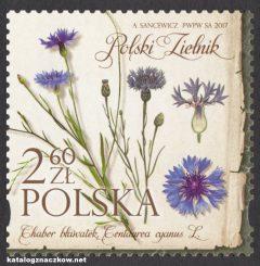 Polski zielnik - 4783