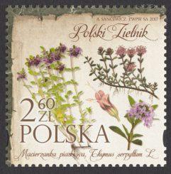 Polski zielnik - 4786