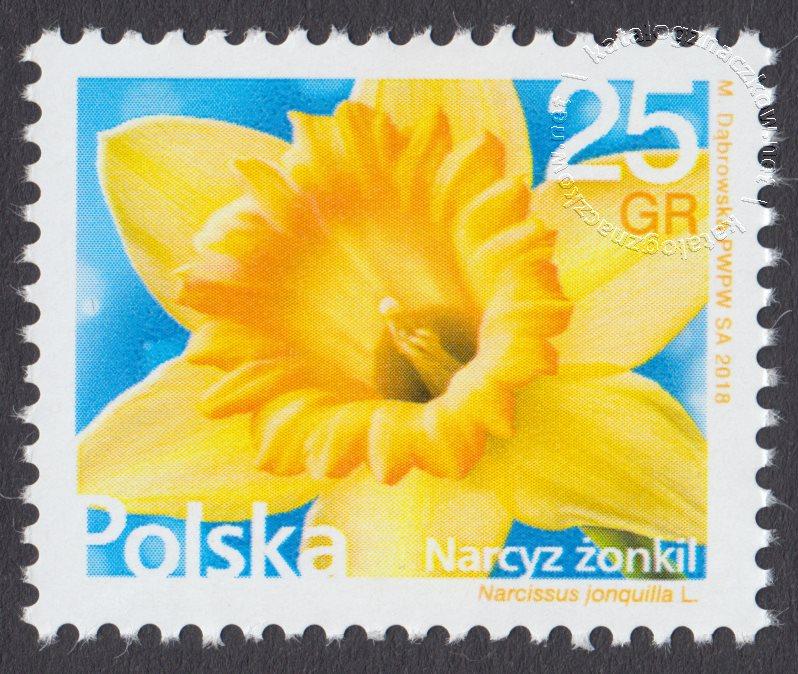 Kwiaty i owoce żonkil znaczek nr 4829