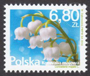 Kwiaty i owoce konwalia malinowa - 4839