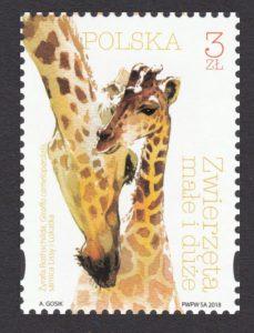 Zwierzęta małe i duże - 4932