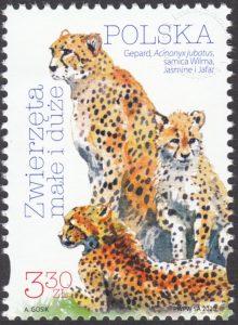 Zwierzęta małe i duże - 5060