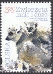 Zwierzęta małe i duże - 5063