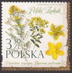 Polski Zielnik - 5084
