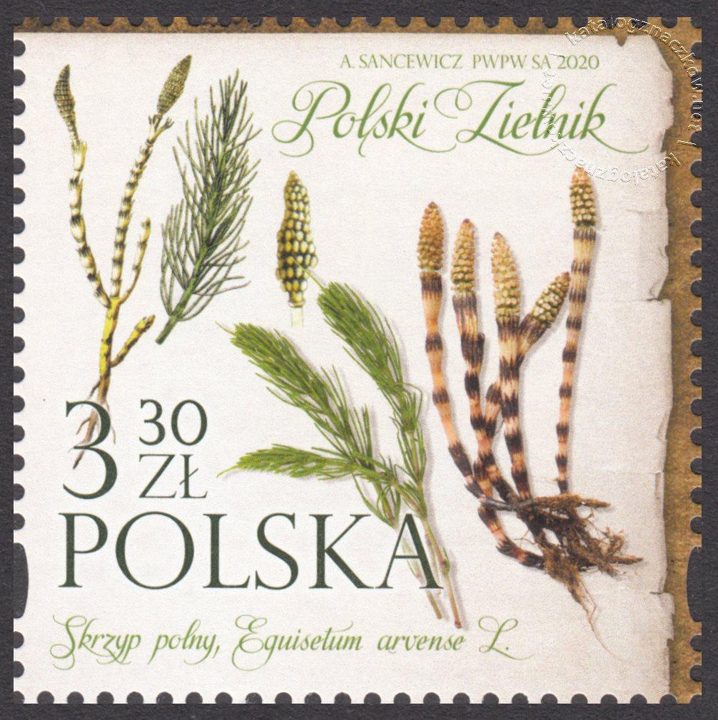 Polski Zielnik znaczek nr 5086