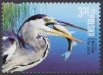 Polskie ptaki - 5115
